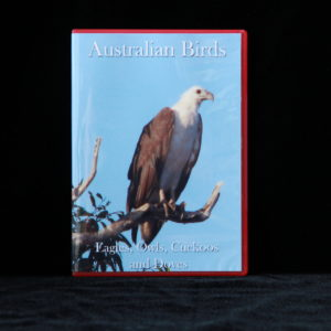 Australian Birds DVD Eagles, Owls, Cuckoos and Doves