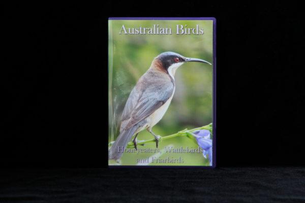 Australian Birds DVD Honeyeaters, Wattlebirds and Friarbirds