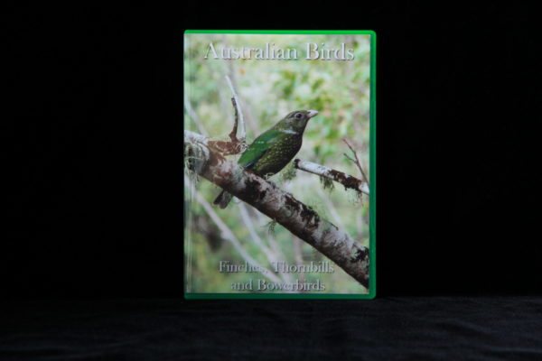 Australian Birds DVD Finches, Thornbills and Bowerbirds