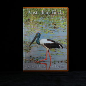 Australian Birds DVD Ducks, Herons and Egrets