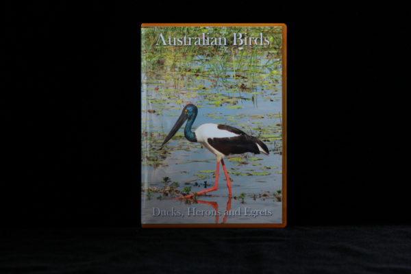 Australian Birds DVD Ducks, Herons and Egrets